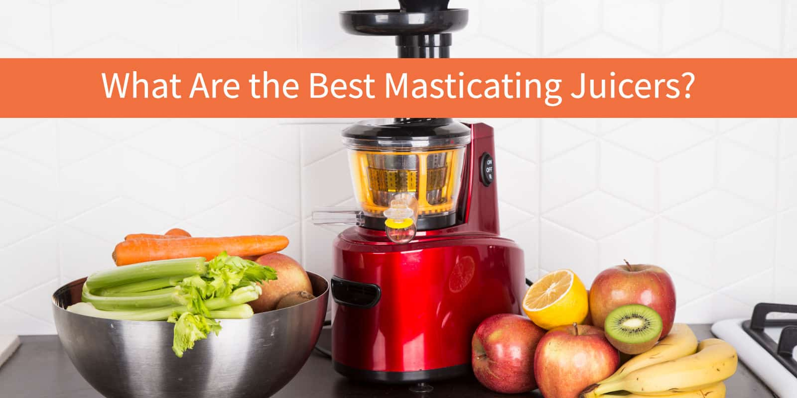 The Top 10 Best Masticating Juicers of 2017 vegByte