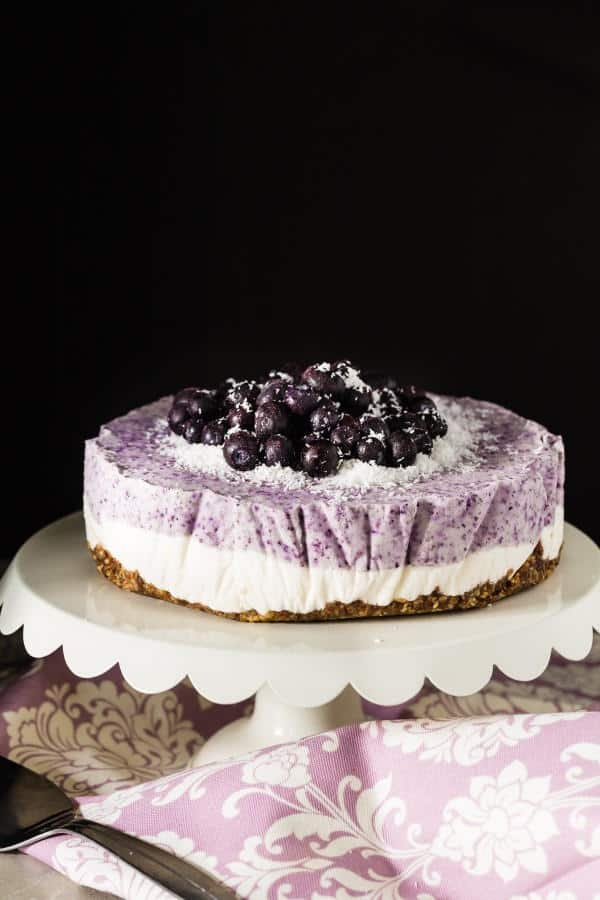 Blueberry Coconut Frozen Cake