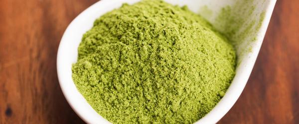 Spoon of barley powder