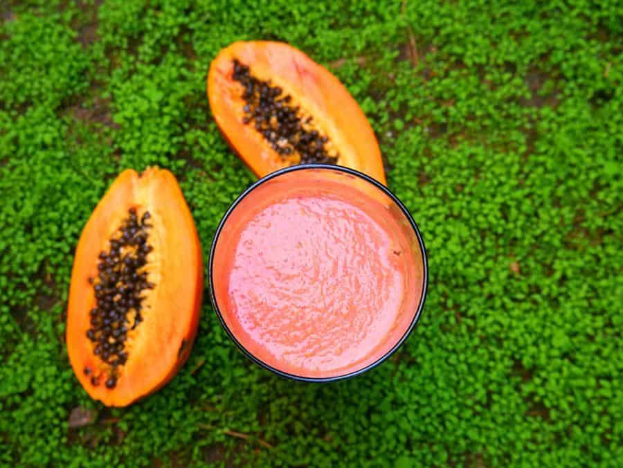 Raw Papaya Smoothie