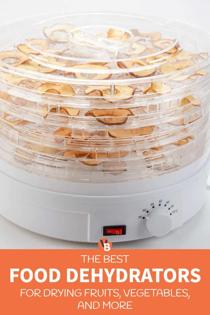 5 Best Food Dehydrators for Drying Fruits, Vegetables, and More